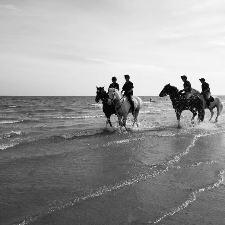 Household cavalry at Holkham Beach