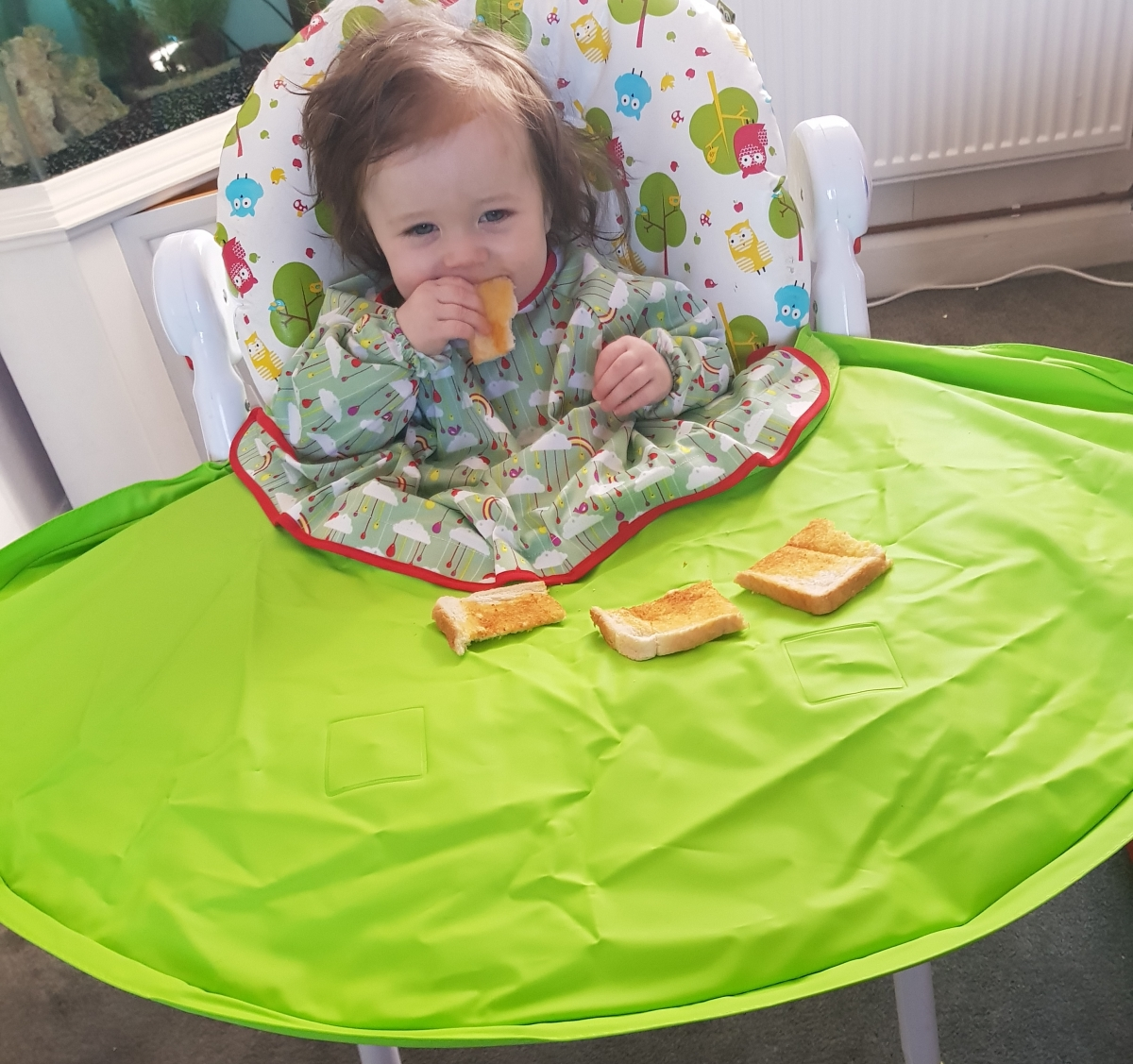 Tidy Tot - Mealtime Saviour?