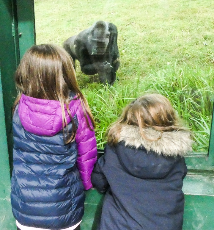 A Weekend in Kent – Port Lympne Reserve and Hotel!